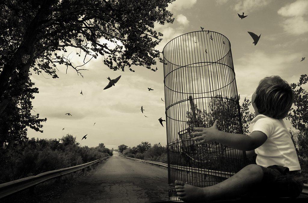 La terapia: del desamor a la libertad