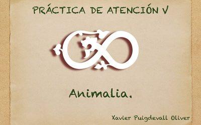 Pràctiques d'Atenció V Animalia