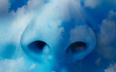 El olfato: un camino hacia el instinto