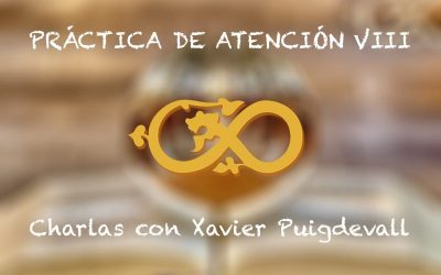 Pràctiques d'atenció VIII Xerrades amb Xavier Puigdevall