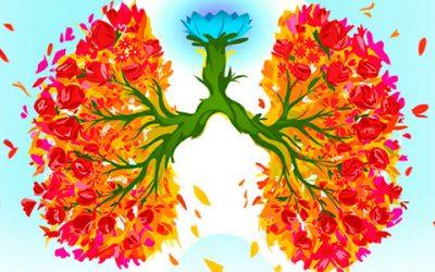 El poder de la respiración: una puerta a la renovación